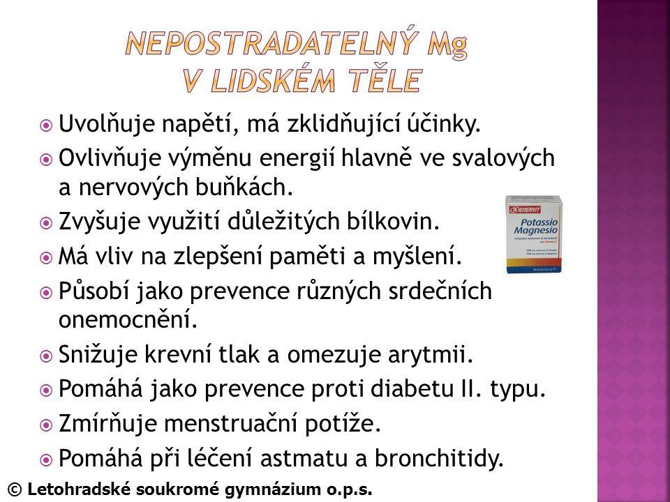 nepostradatelný Mg v lidském Těle