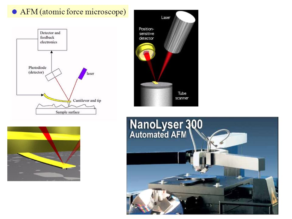  AFM (atomic force microscope)