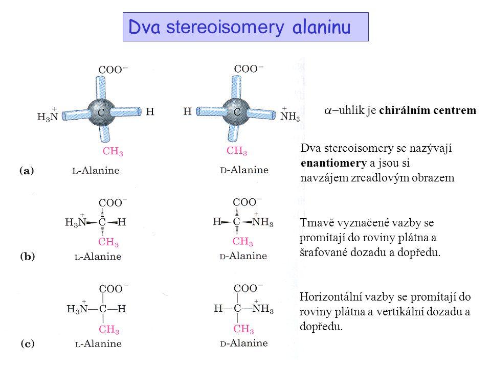 Dva stereoisomery alaninu