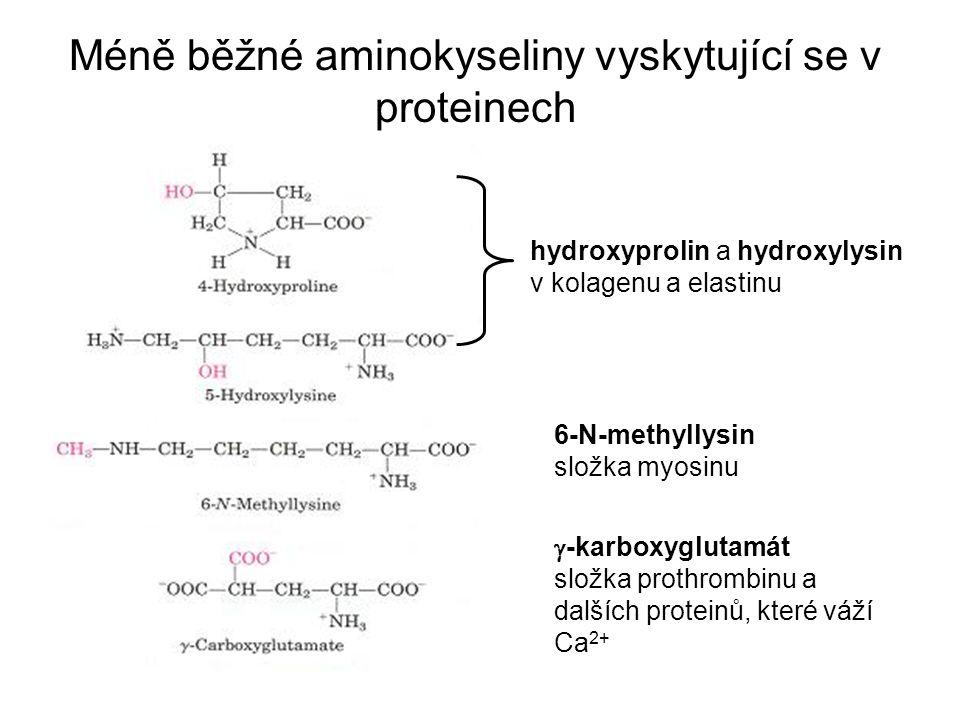 Méně běžné aminokyseliny vyskytující se v proteinech