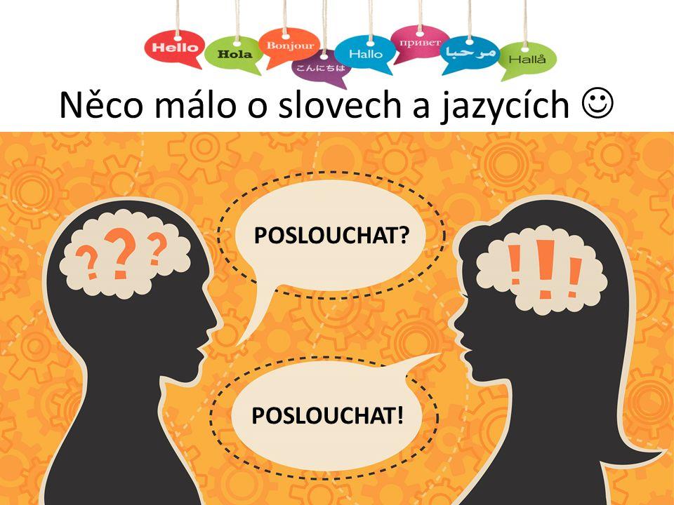 Něco málo o slovech a jazycích 