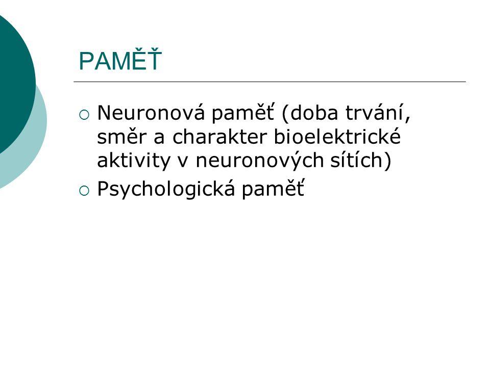 PAMĚŤ Neuronová paměť (doba trvání, směr a charakter bioelektrické aktivity v neuronových sítích) Psychologická paměť.