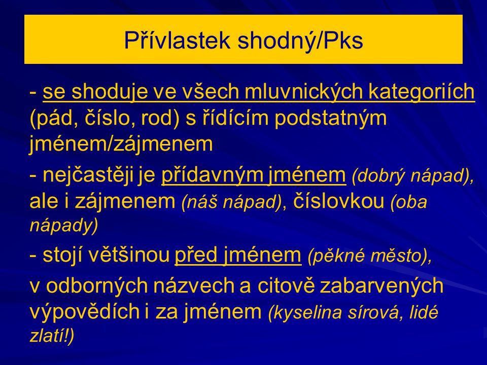 Přívlastek shodný/Pks