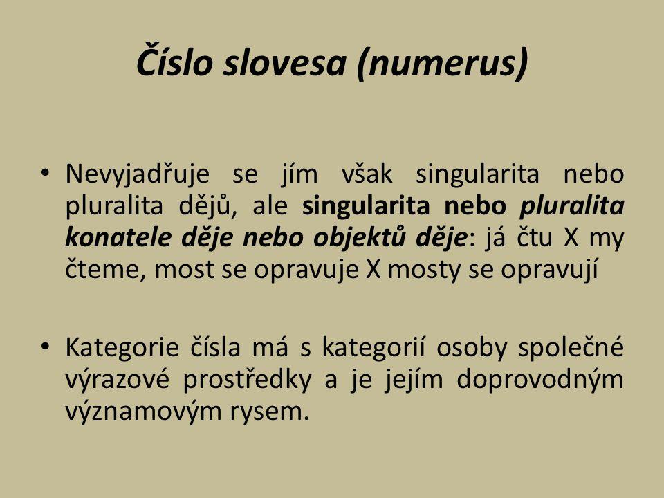 Číslo slovesa (numerus)