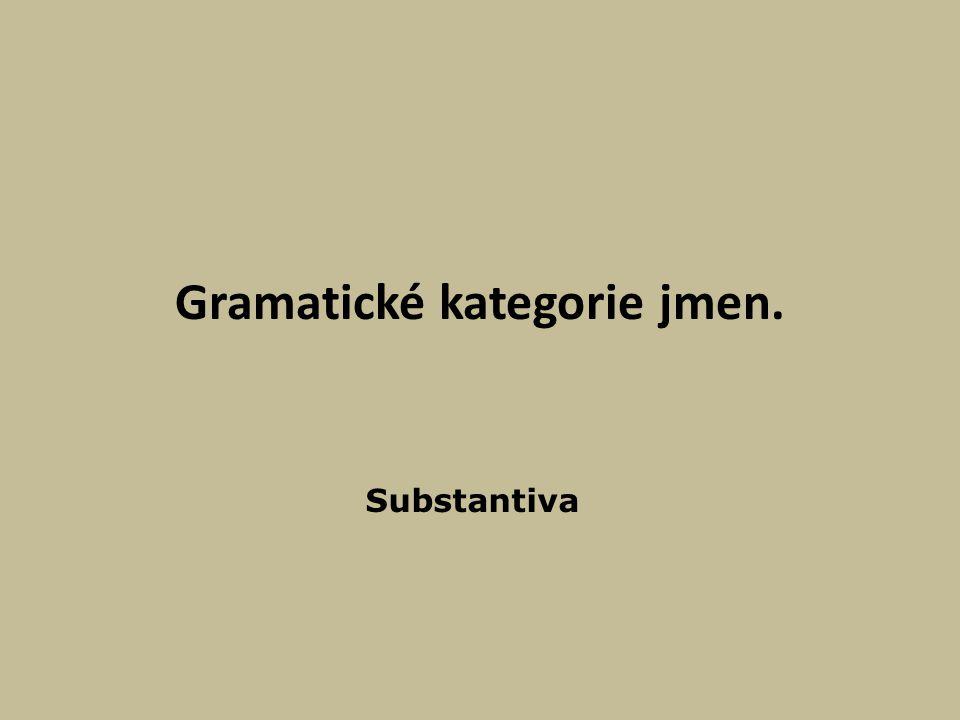 Gramatické kategorie jmen.