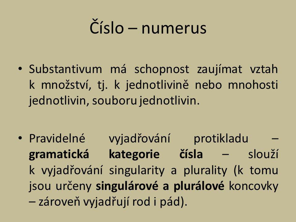 Číslo – numerus Substantivum má schopnost zaujímat vztah k množství, tj. k jednotlivině nebo mnohosti jednotlivin, souboru jednotlivin.