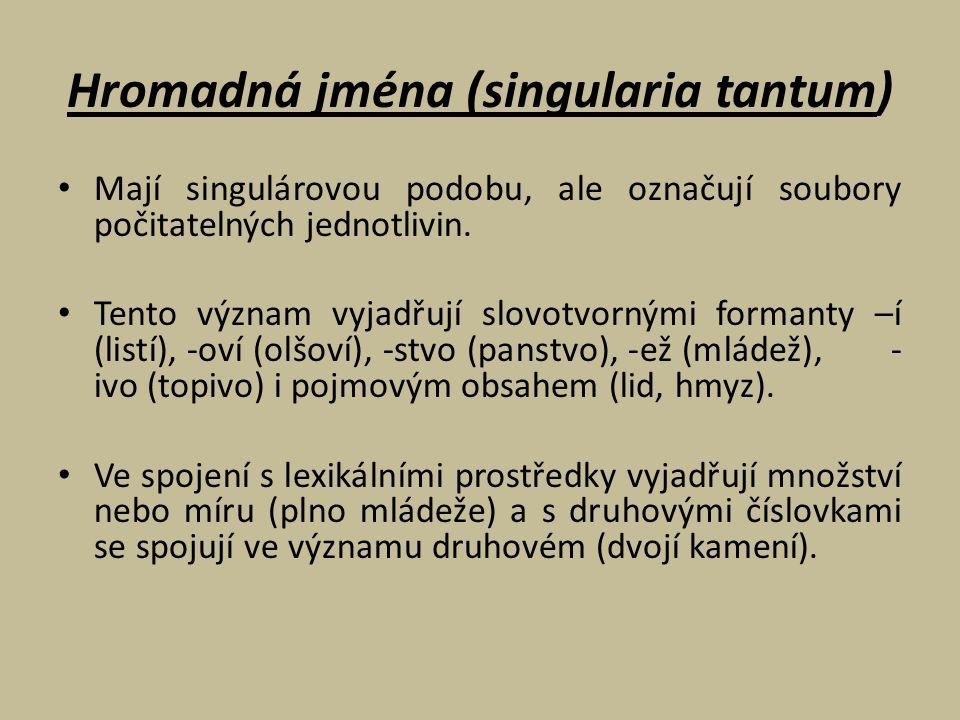 Hromadná jména (singularia tantum)