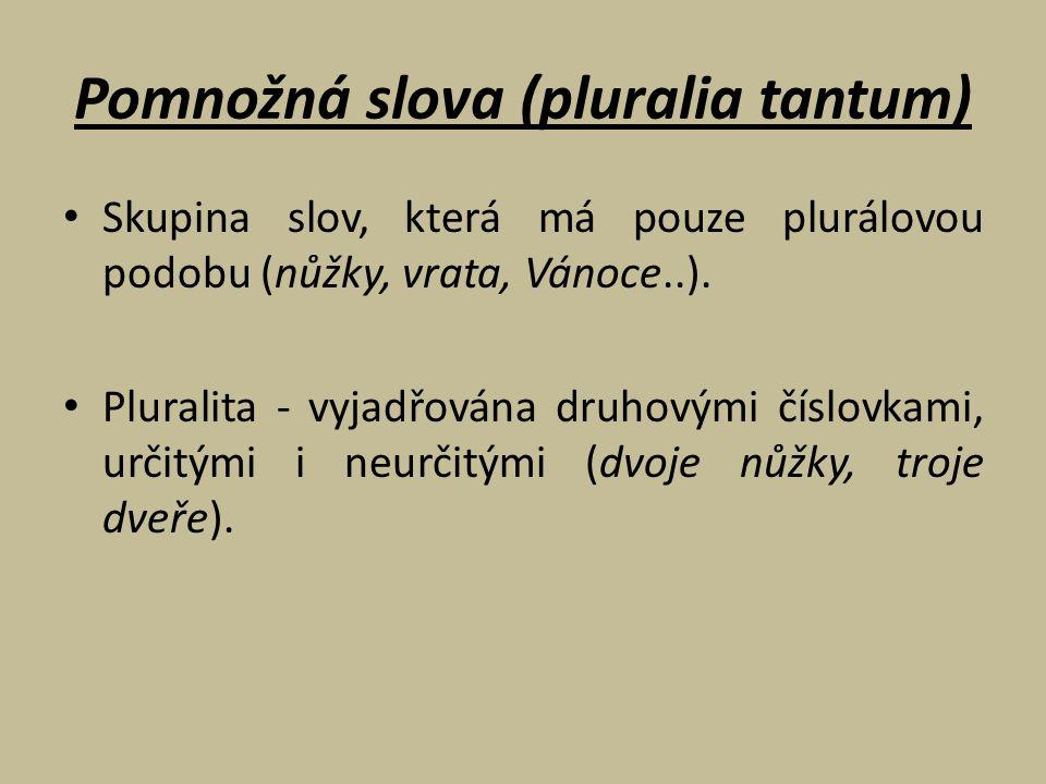 Pomnožná slova (pluralia tantum)