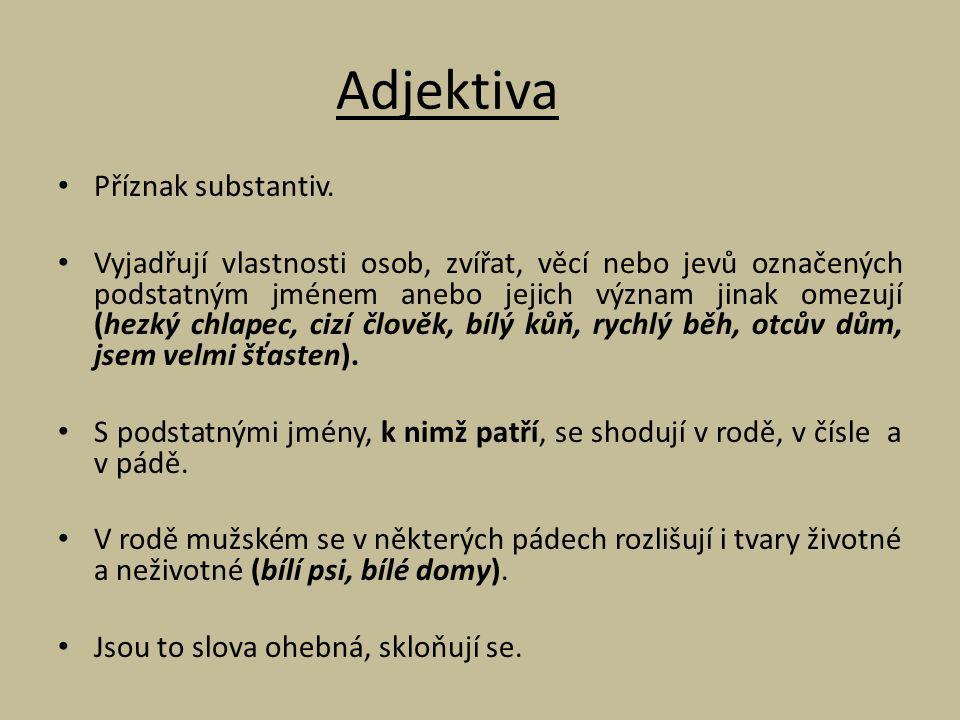 Adjektiva Příznak substantiv.
