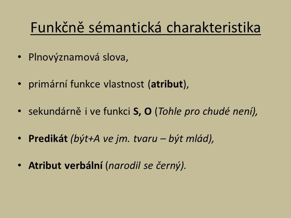 Funkčně sémantická charakteristika