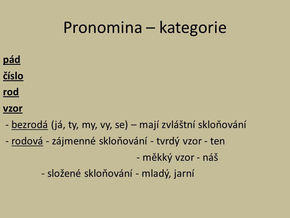Pronomina – kategorie pád číslo rod vzor