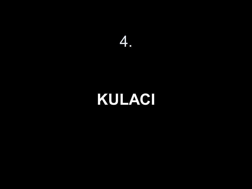 4. KULACI