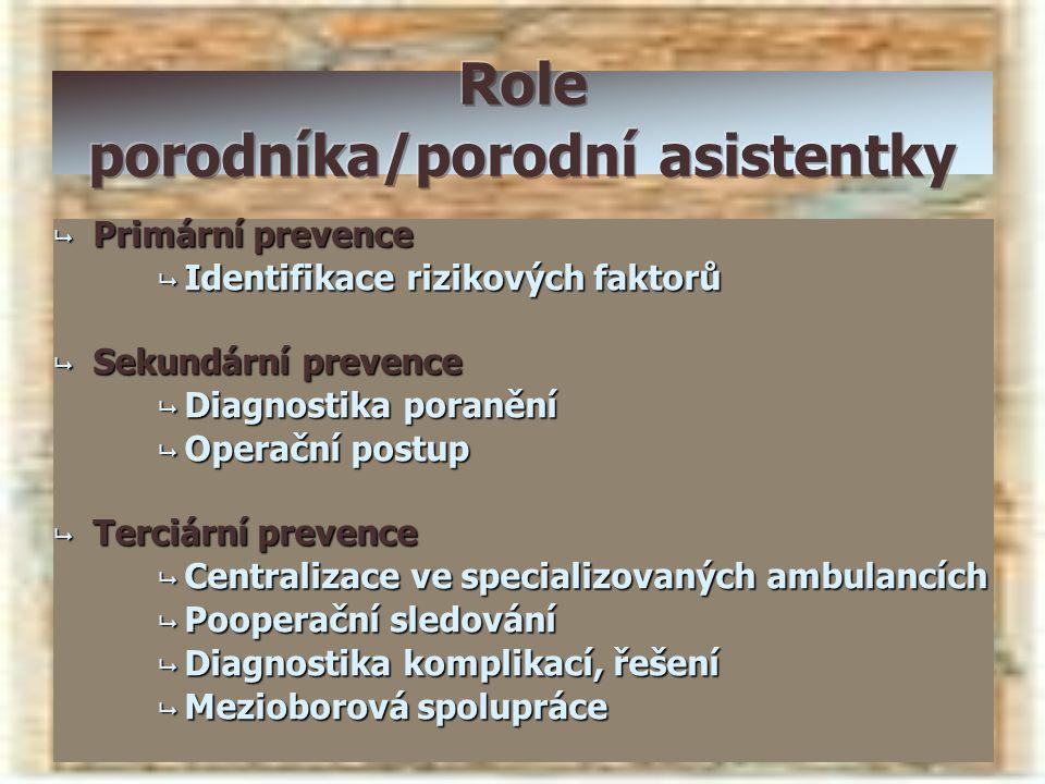 Role porodníka/porodní asistentky