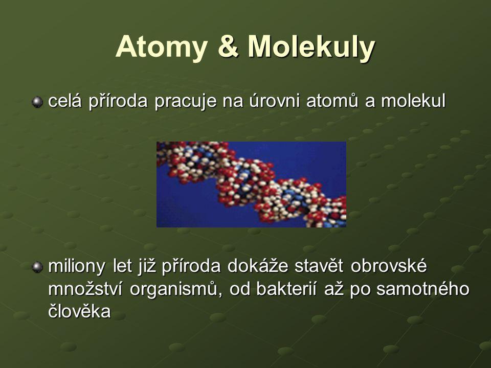 Atomy & Molekuly celá příroda pracuje na úrovni atomů a molekul