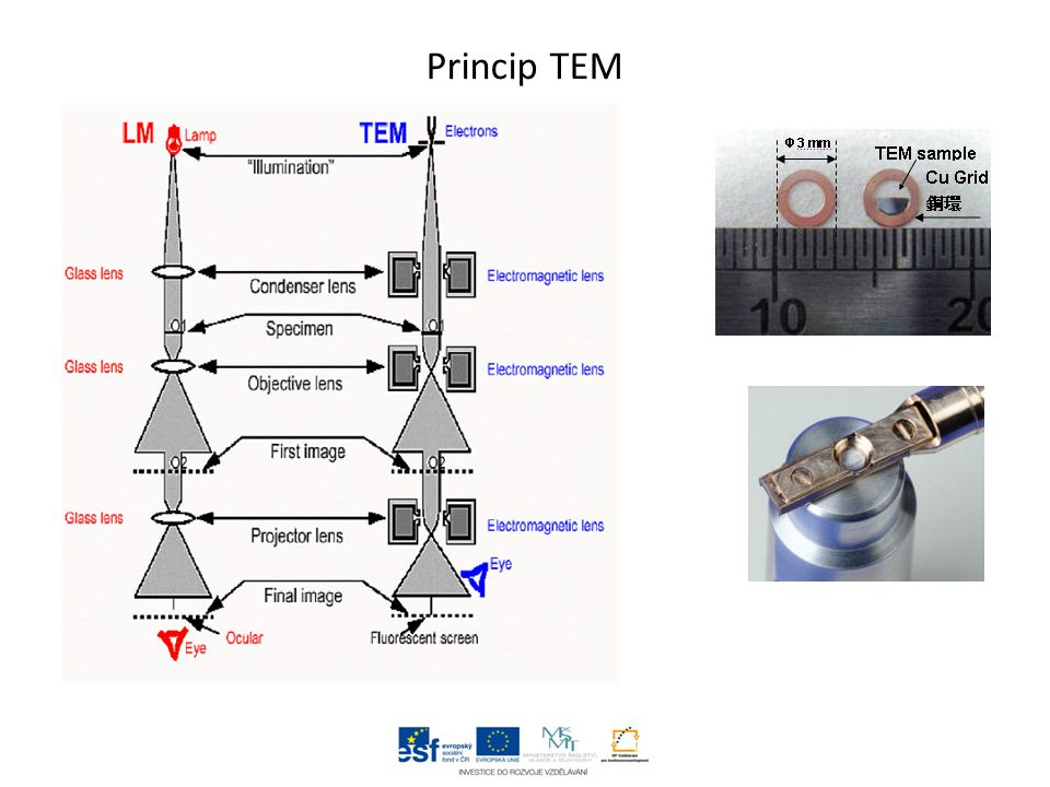 Princip TEM