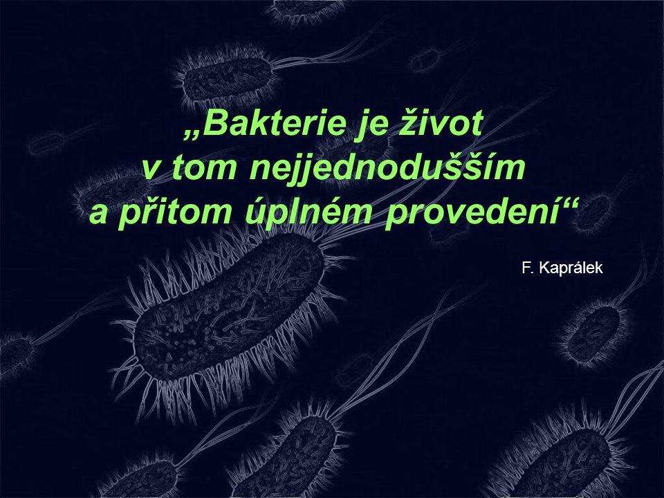 """""""Bakterie je život v tom nejjednodušším a přitom úplném provedení"""