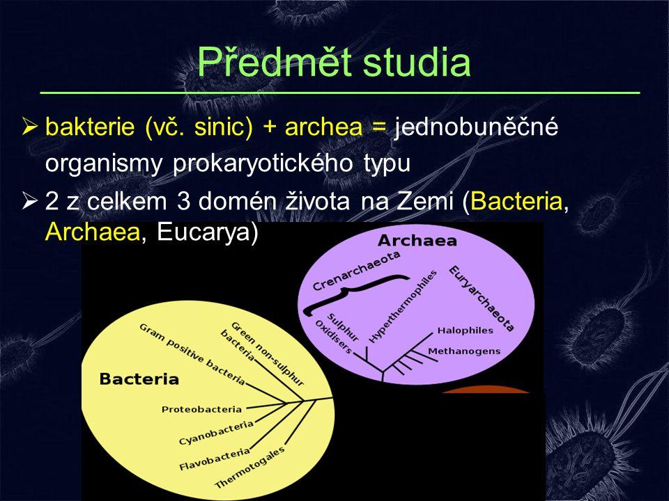 Předmět studia bakterie (vč. sinic) + archea = jednobuněčné organismy prokaryotického typu.
