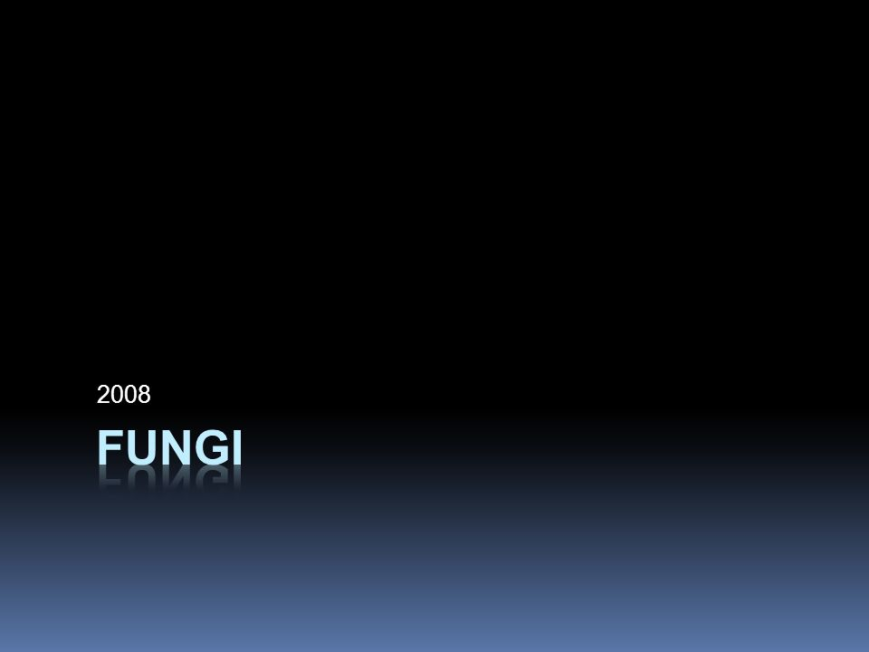 2008 Fungi