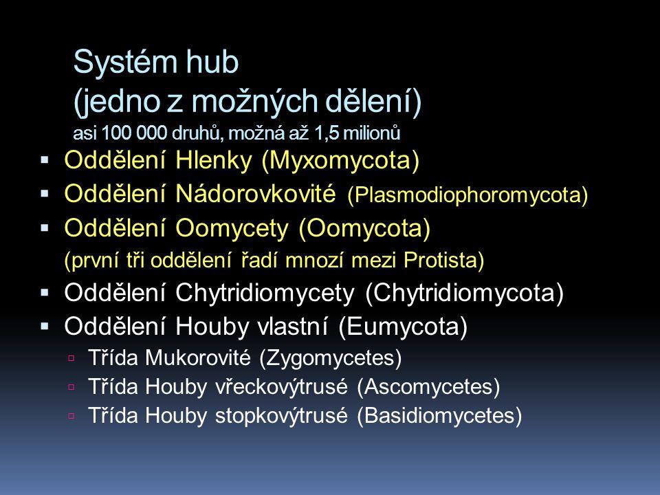 Systém hub (jedno z možných dělení) asi 100 000 druhů, možná až 1,5 milionů