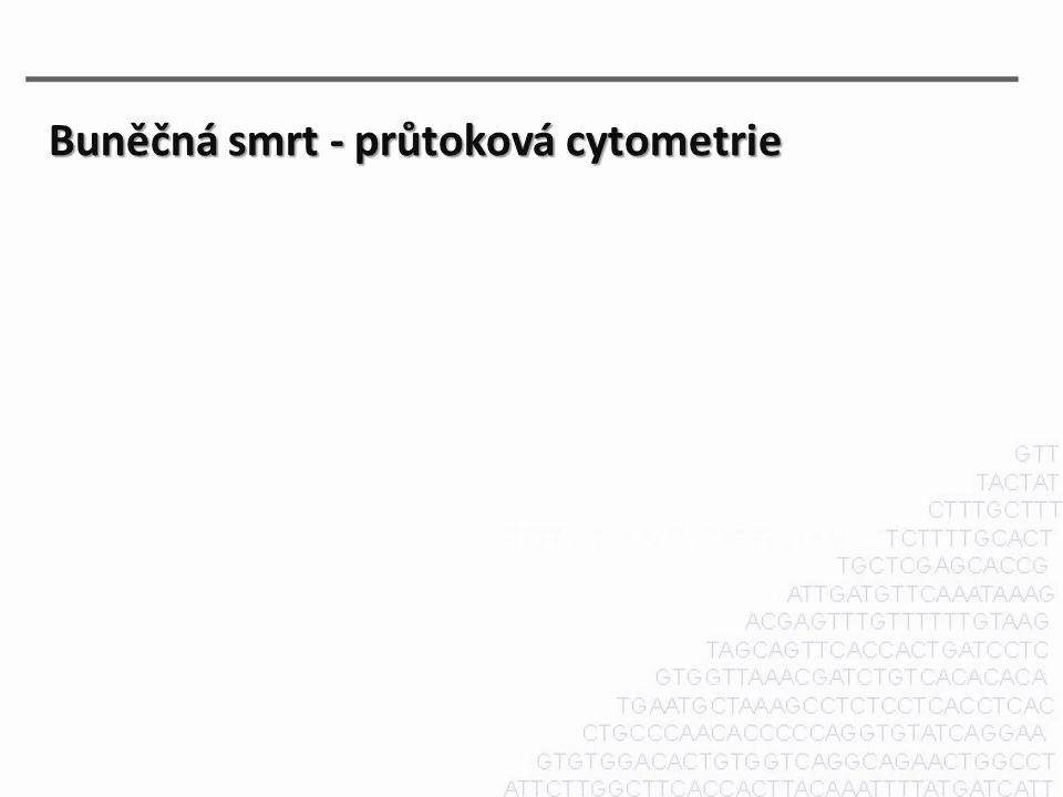 Buněčná smrt - průtoková cytometrie