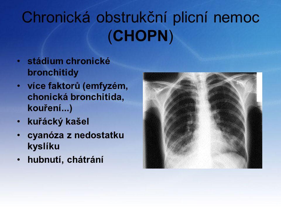 Chronická obstrukční plicní nemoc (CHOPN)