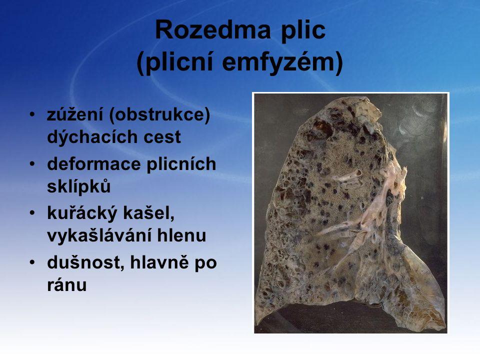 Rozedma plic (plicní emfyzém)