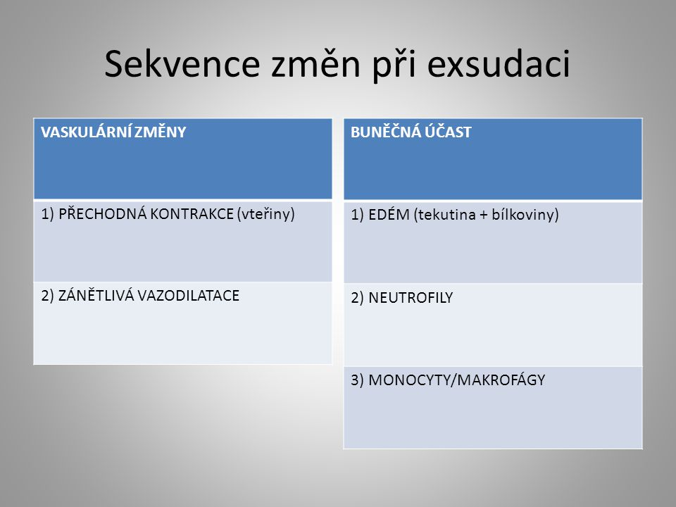 Sekvence změn při exsudaci