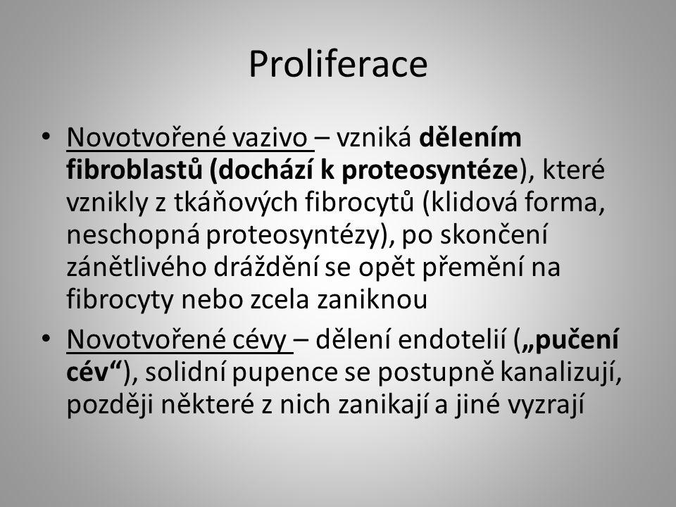 Proliferace