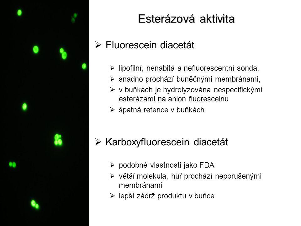 Esterázová aktivita Fluorescein diacetát Karboxyfluorescein diacetát