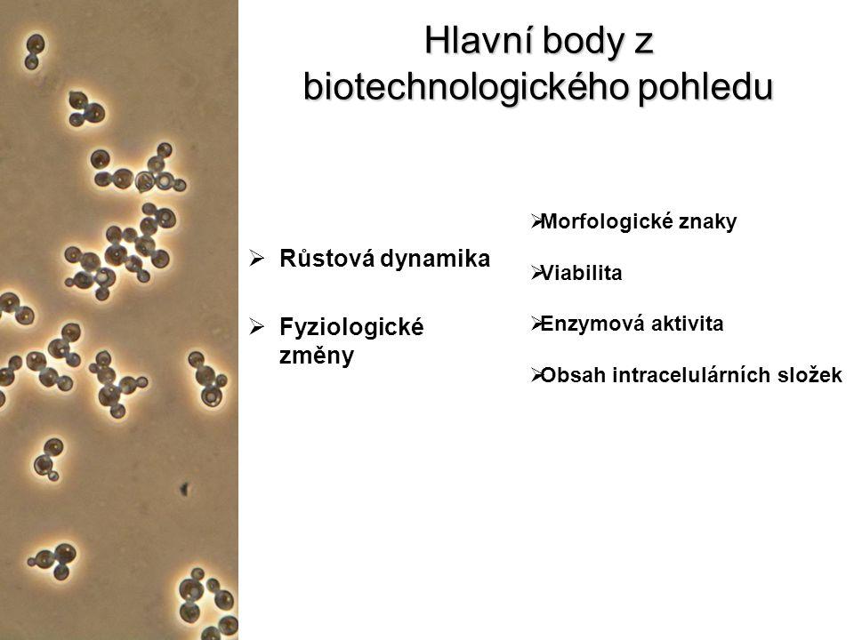 Hlavní body z biotechnologického pohledu