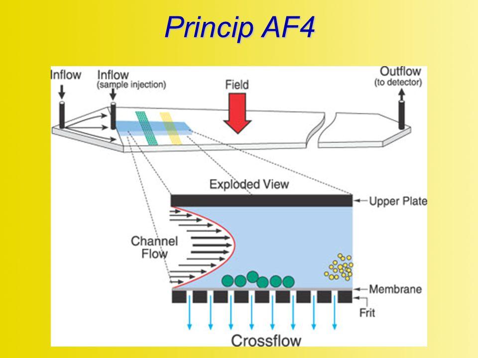 Princip AF4