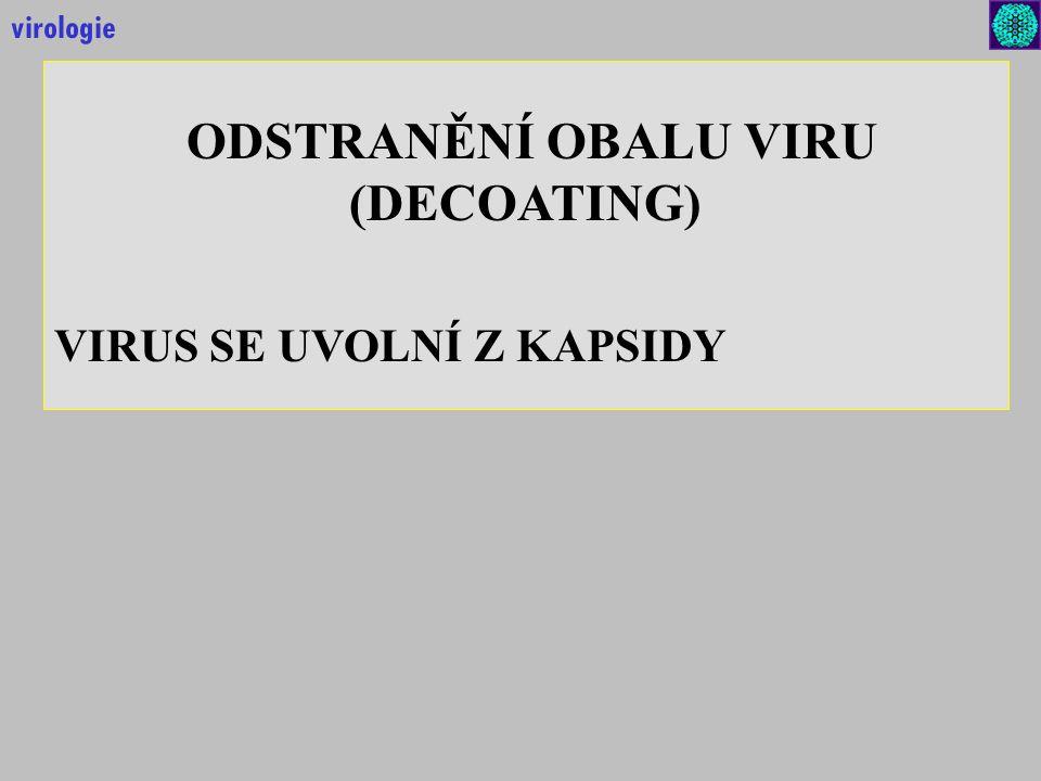 ODSTRANĚNÍ OBALU VIRU (DECOATING)