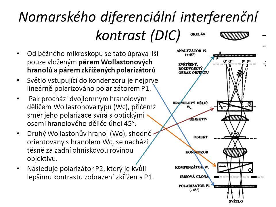 Nomarského diferenciální interferenční kontrast (DIC)