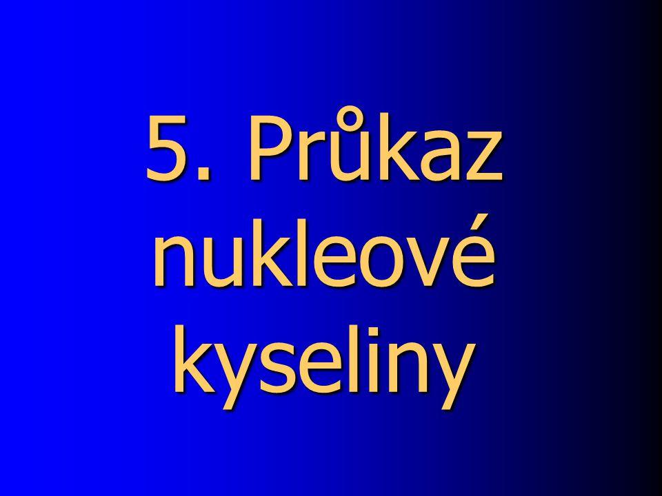 5. Průkaz nukleové kyseliny