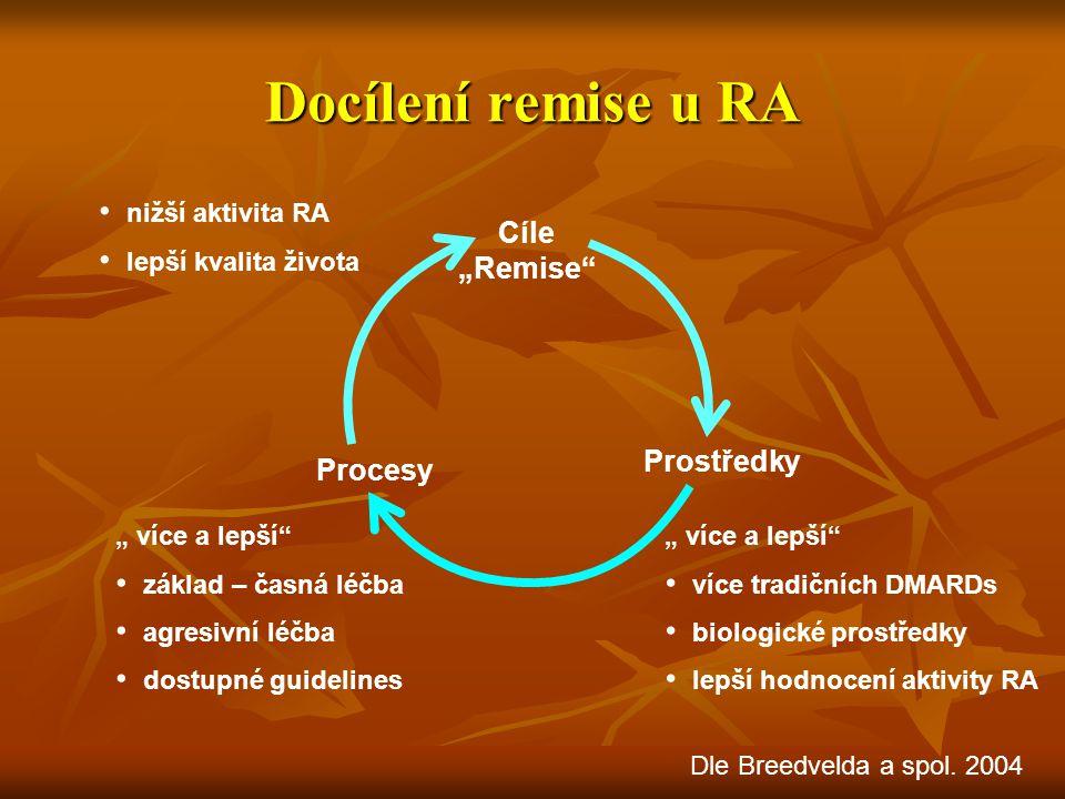 """Docílení remise u RA Cíle """"Remise Prostředky Procesy"""