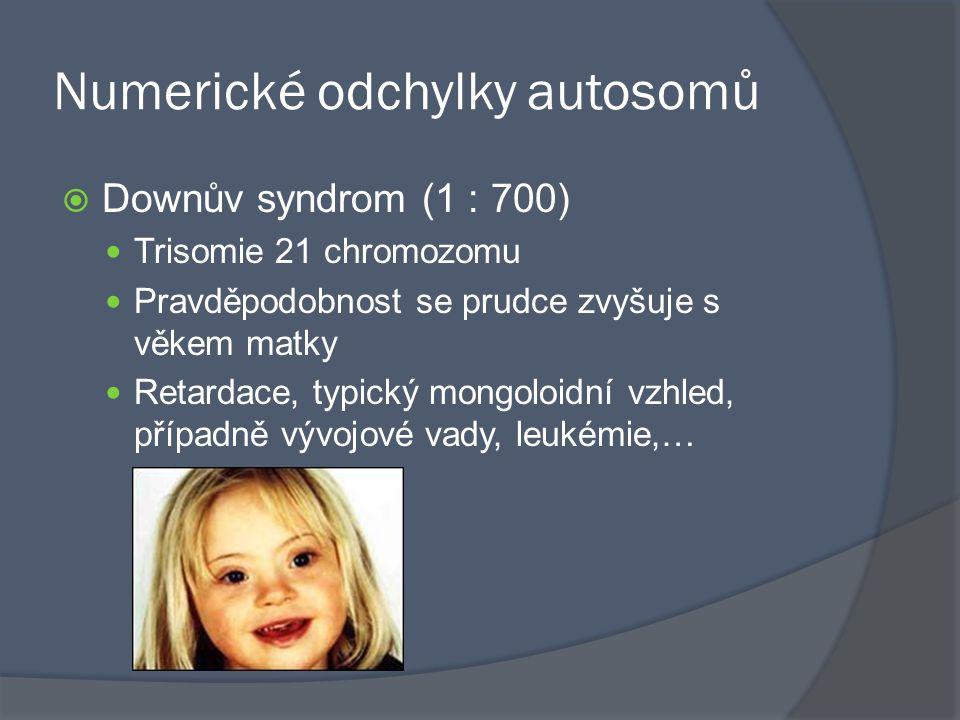 Numerické odchylky autosomů