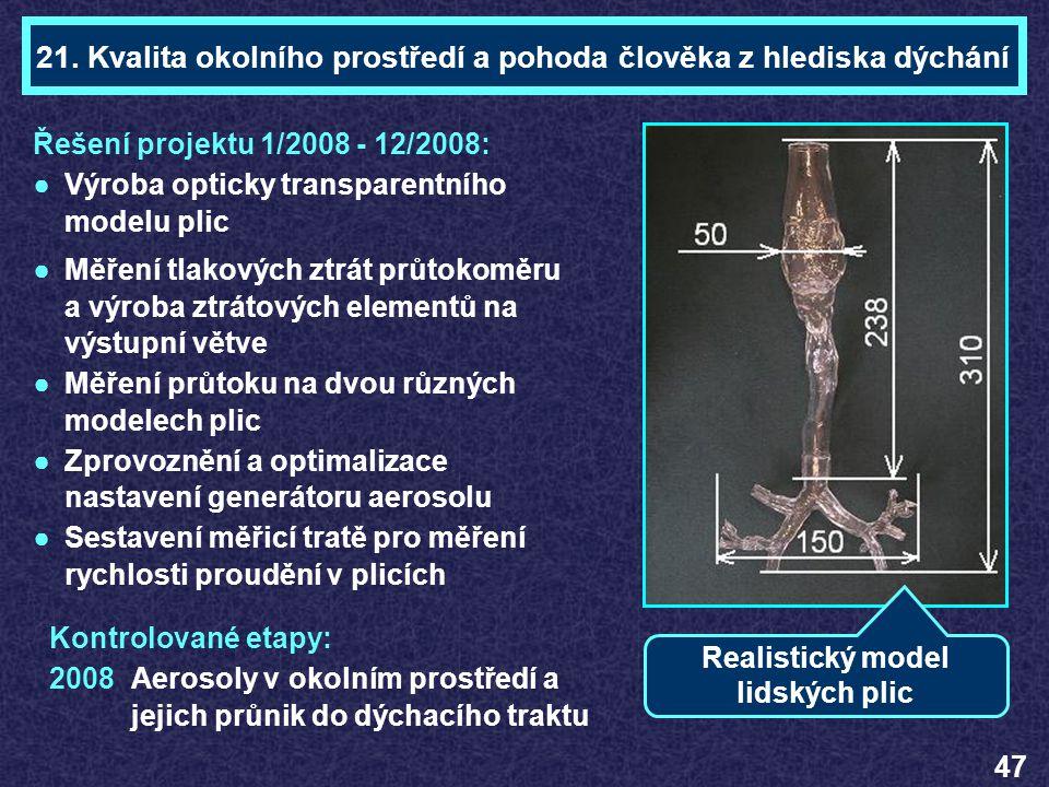 Ing. František LÍZAL Téma 21