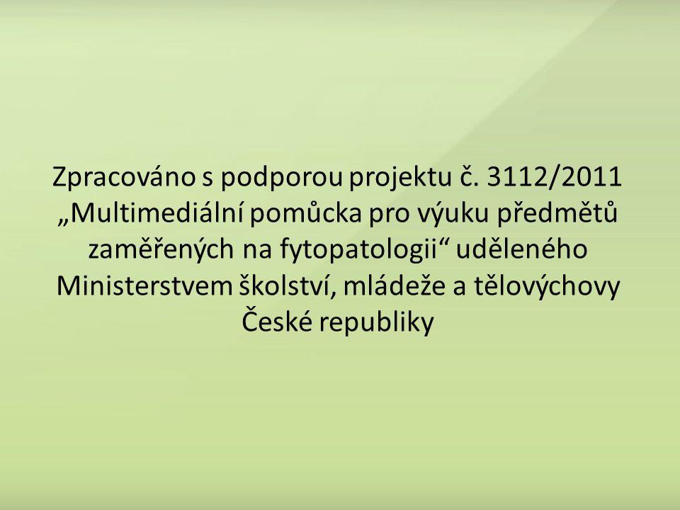 Zpracováno s podporou projektu č