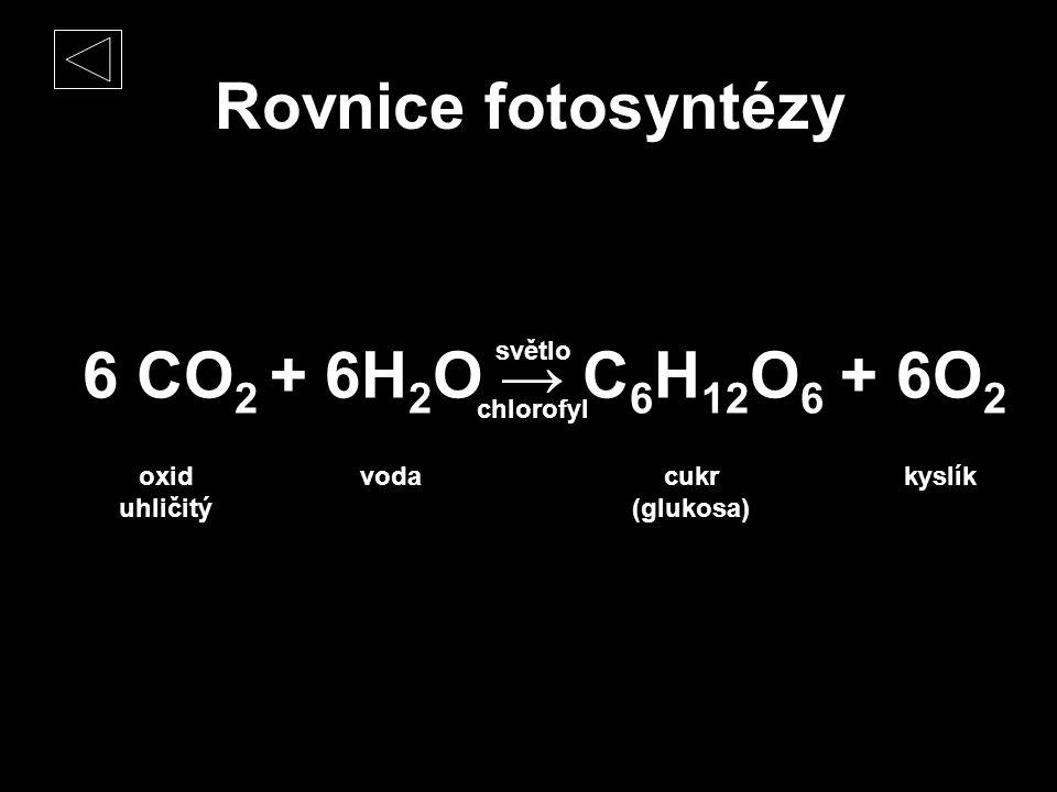 Rovnice fotosyntézy 6 CO2 + 6H2O → C6H12O6 + 6O2