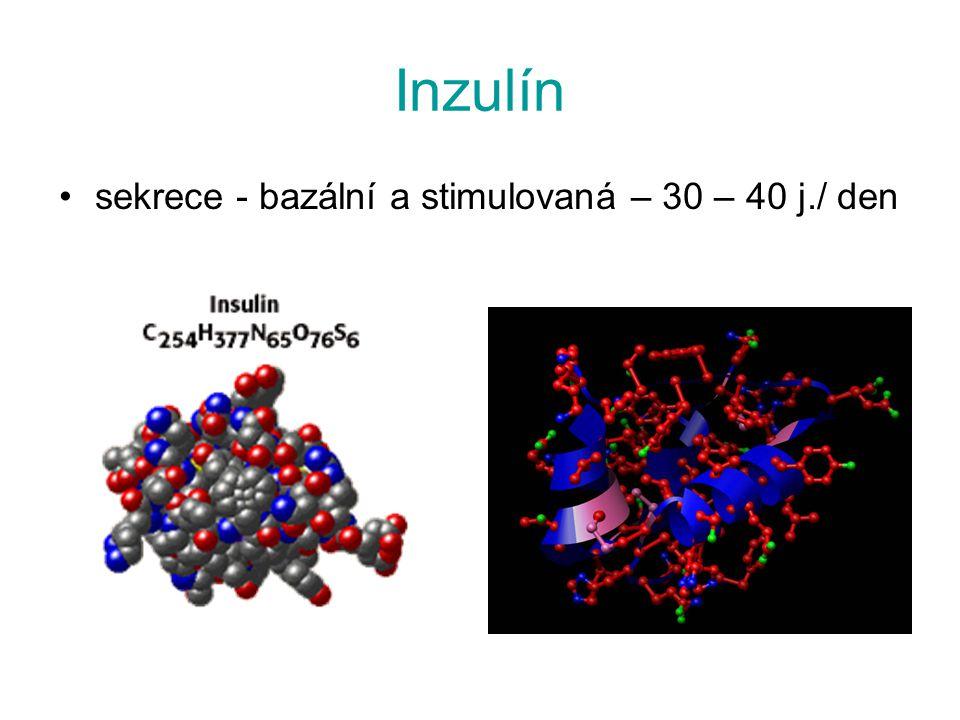 Inzulín sekrece - bazální a stimulovaná – 30 – 40 j./ den