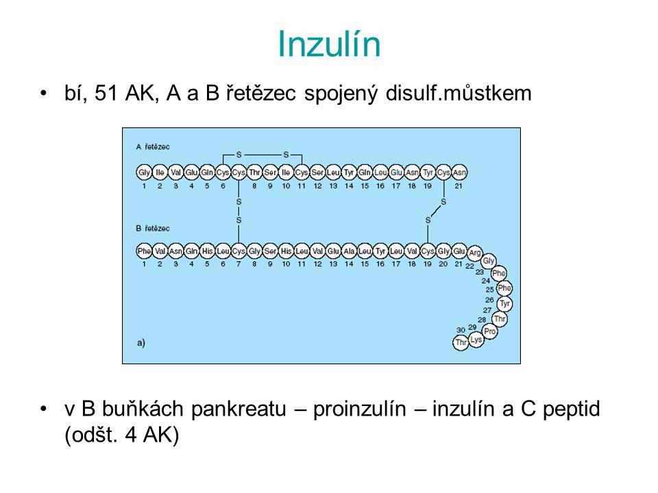 Inzulín bí, 51 AK, A a B řetězec spojený disulf.můstkem