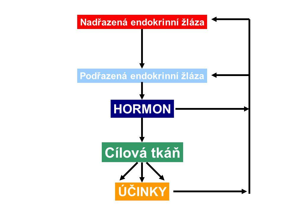 Nadřazená endokrinní žláza Podřazená endokrinní žláza