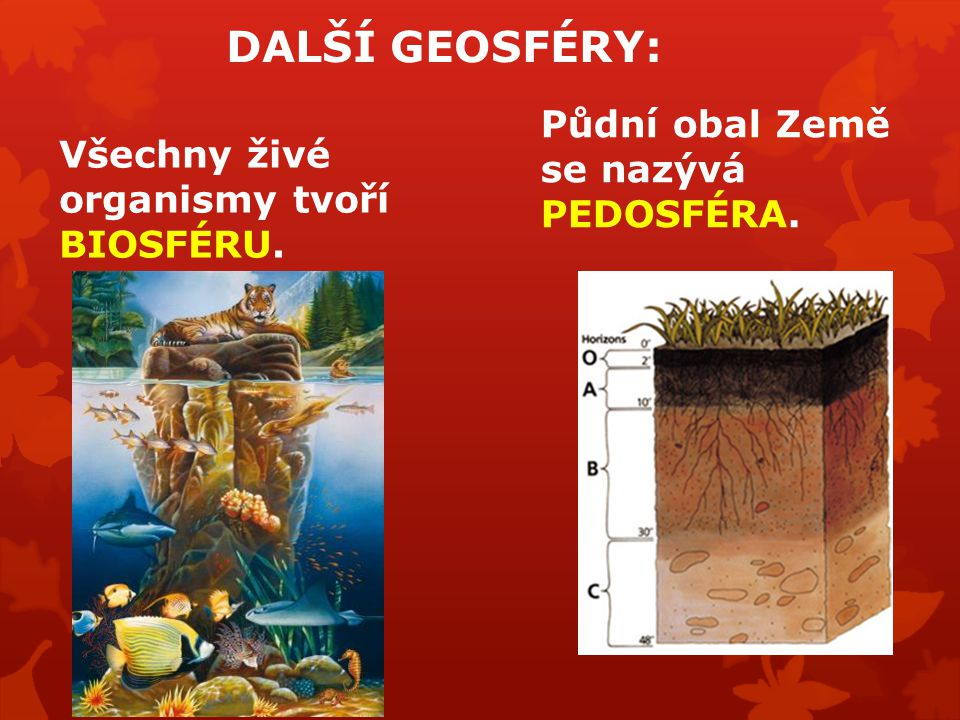 DALŠÍ GEOSFÉRY: Půdní obal Země se nazývá PEDOSFÉRA.
