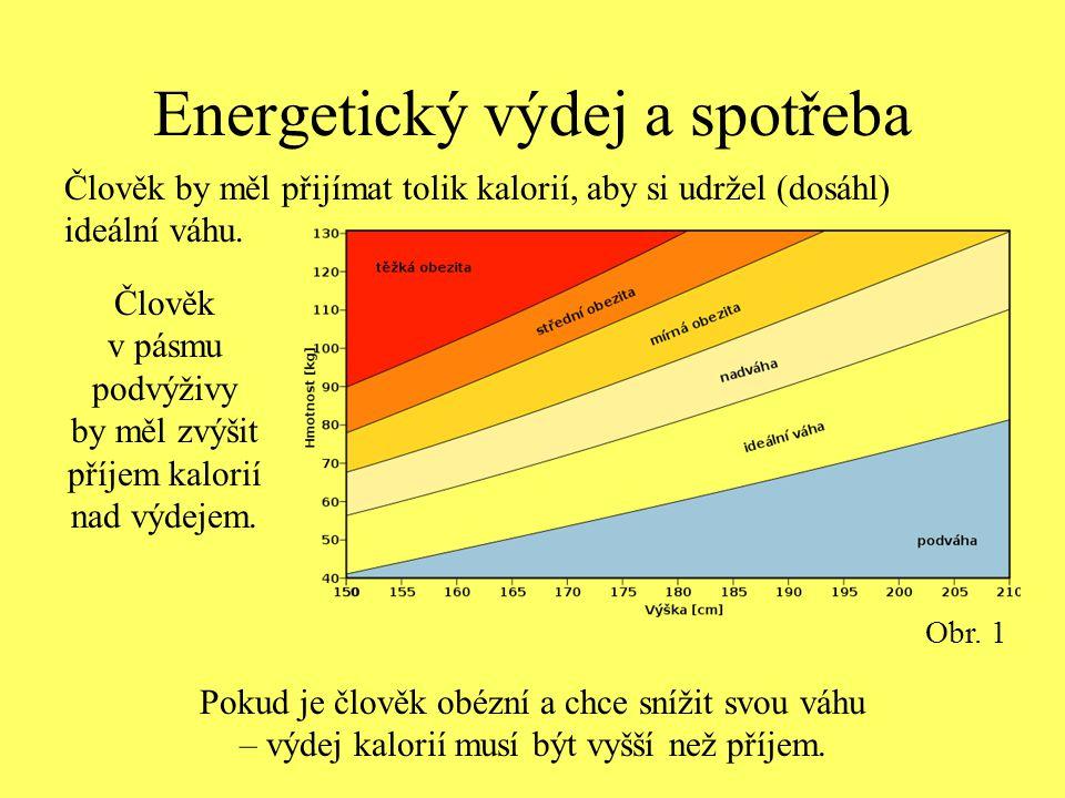 Energetický výdej a spotřeba