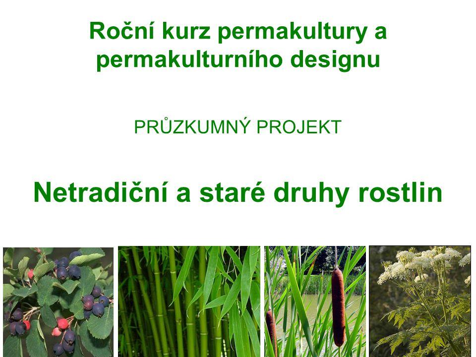 Roční kurz permakultury a permakulturního designu