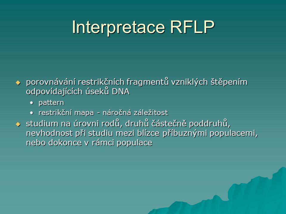 Interpretace RFLP porovnávání restrikčních fragmentů vzniklých štěpením odpovídajících úseků DNA. pattern.