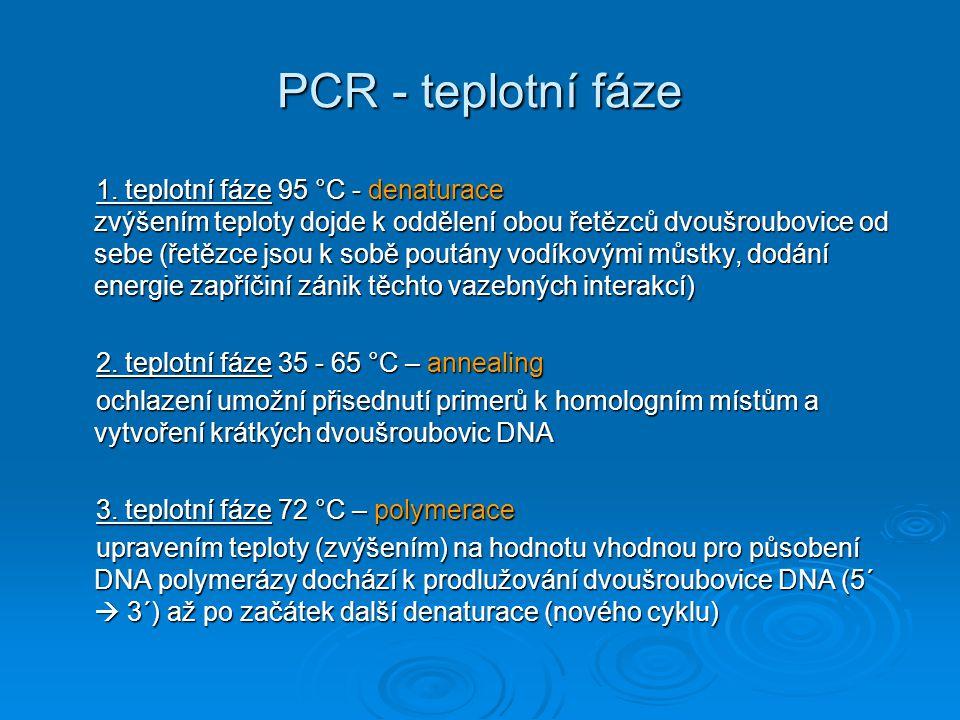 PCR - teplotní fáze