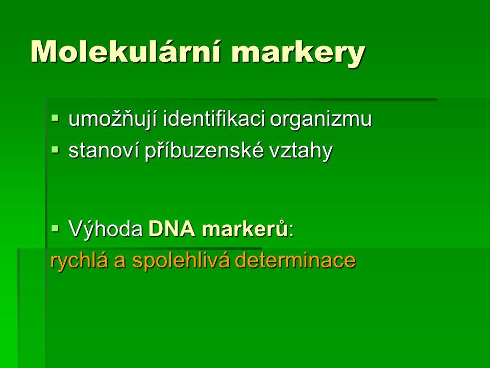 Molekulární markery umožňují identifikaci organizmu