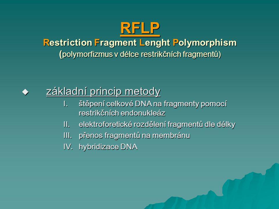 RFLP Restriction Fragment Lenght Polymorphism (polymorfizmus v délce restrikčních fragmentů)