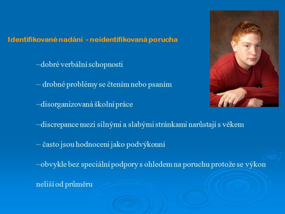 ~ drobné problémy se čtením nebo psaním ~disorganizovaná školní práce